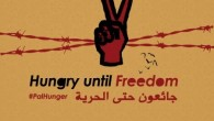 On 17 April 2017 around 1500 Palestinian political prisoners announced the beginning of an open hunger strike. Striking prisoners are calling for an end to Israel's practice of abuse, solitary...