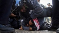 European professors and academic institutions urged to end cooperation with the EU-funded project over involvement of Israeli institutions known for illegal detention practices, routine torture, and violence against Palestinians. The...